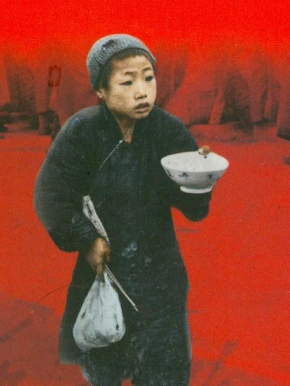 Mao's great faimine – Our blight is ideologies — Revolution is not a dinnerparty.