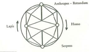 Quaternio series circular