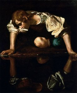narcissus-large